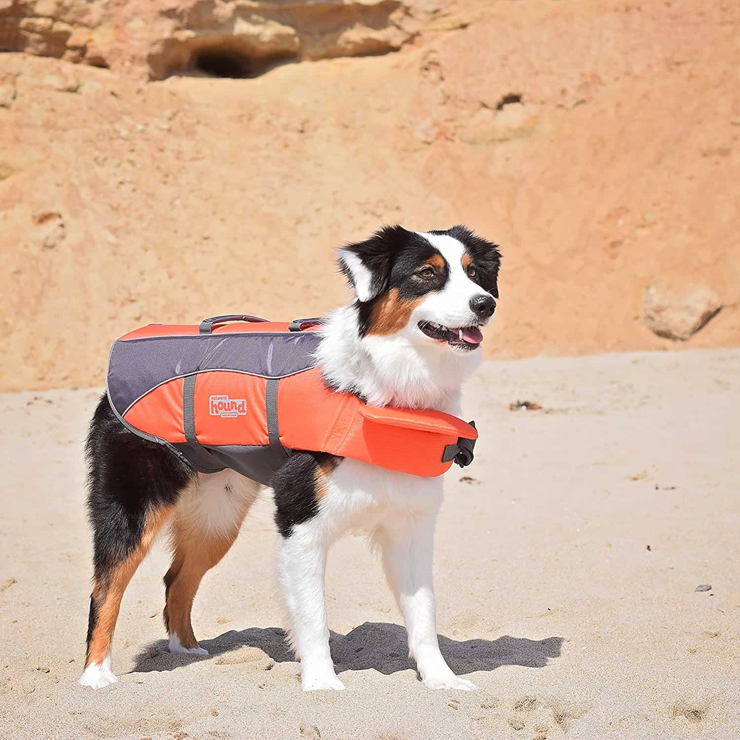 Bright Orange Dog Life Jacket