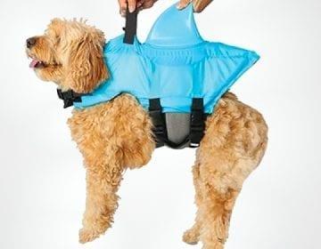 Shark Fin Dog Life Vest