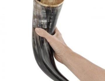 Viking Drinking Horn with Stand