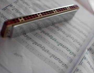 Blues Harp Round-Up: 11 Perfect Harmonicas for Every Player in 2021