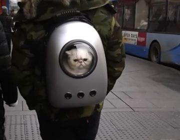 Astronaut Pet Travel Bag
