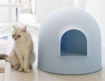 Igloo Cat Litter Box Kit
