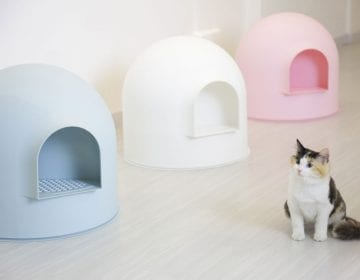 Igloo Cat Litter Box Kit