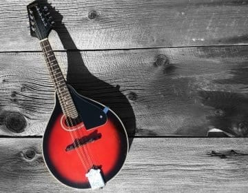 5 Tuneful (and Affordable) Mandolin Reviews – Up Your Bluegrass Game in 2020