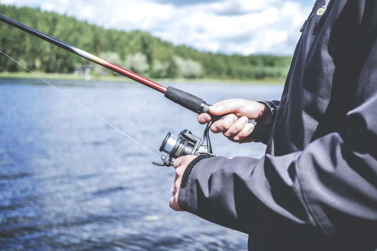 10 Reel Good Baitcasters — Stop Fishing And Start Catching in 2020