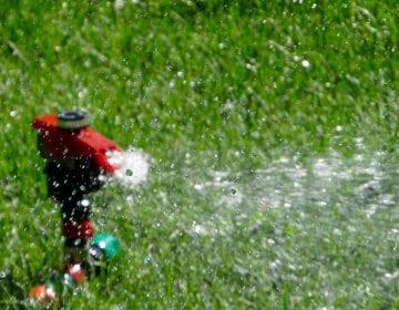 5 Best Effective Impact Sprinkler Heads in 2021 Reviews-Guide to Pick the Best Impact Sprinkler Heads